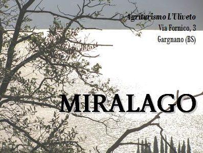 Agriturismo l'Uliveto - Appartamento Miralago